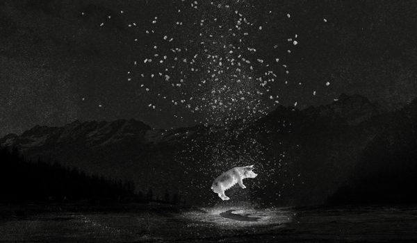 ©-Sarah-Bouillaud-Le-deuxième-voyage-fantastique-600x350