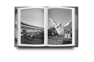 Rhome book reproductions_03