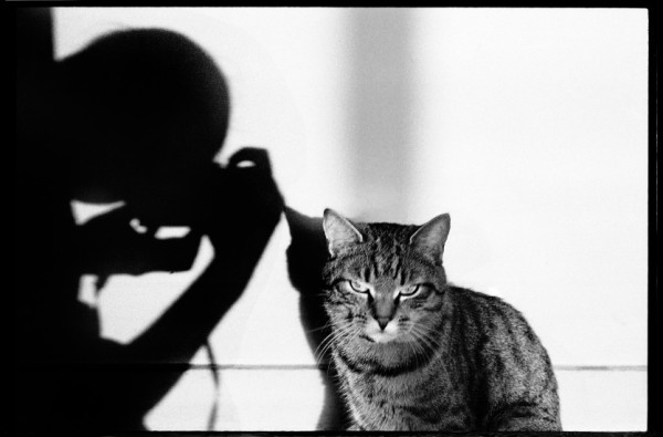 Autoportait au chat, Paris, 1993 © Jean-Christophe Béchet